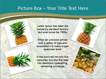 0000086670 PowerPoint Template - Slide 24