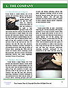 0000086672 Word Template - Page 3