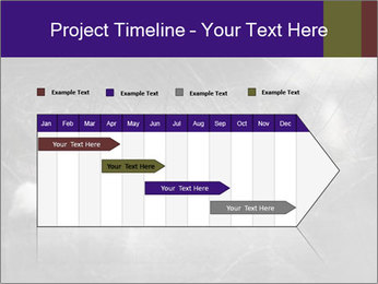 0000086675 PowerPoint Template - Slide 25