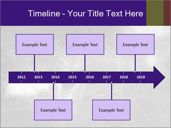 0000086675 PowerPoint Template - Slide 28