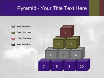 0000086675 PowerPoint Template - Slide 31