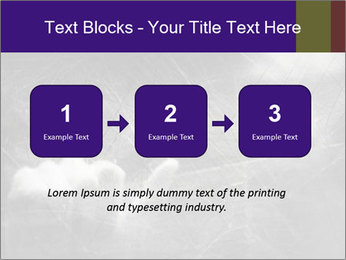 0000086675 PowerPoint Template - Slide 71
