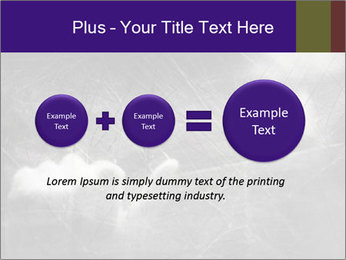 0000086675 PowerPoint Template - Slide 75