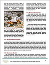 0000086680 Word Template - Page 4