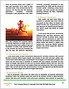 0000086699 Word Templates - Page 4