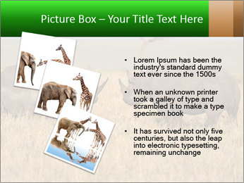 0000086700 PowerPoint Template - Slide 17