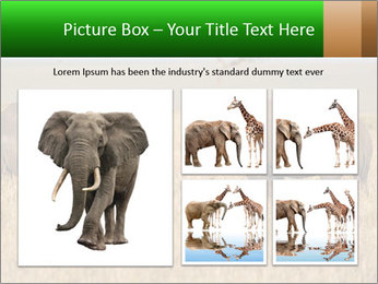 0000086700 PowerPoint Template - Slide 19