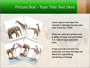 0000086700 PowerPoint Template - Slide 23