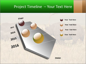 0000086700 PowerPoint Template - Slide 26