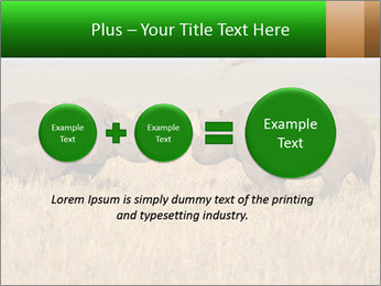 0000086700 PowerPoint Template - Slide 75