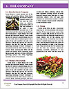 0000086716 Word Template - Page 3