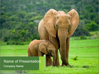 0000086724 PowerPoint Template