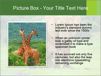 0000086724 PowerPoint Templates - Slide 13