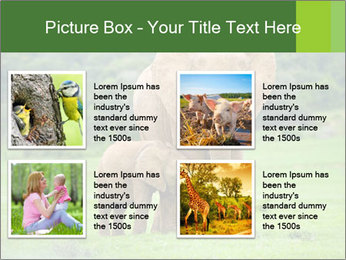 0000086724 PowerPoint Templates - Slide 14
