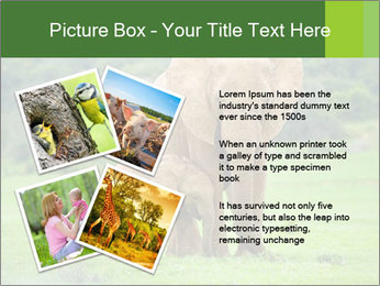 0000086724 PowerPoint Templates - Slide 23