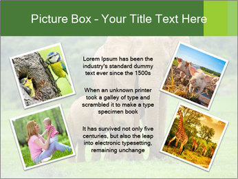 0000086724 PowerPoint Templates - Slide 24