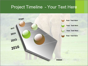 0000086724 PowerPoint Template - Slide 26