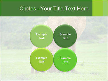 0000086724 PowerPoint Templates - Slide 38