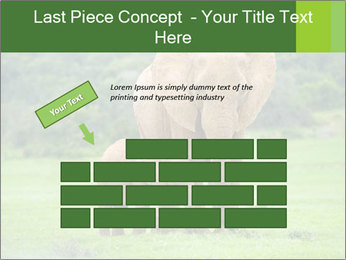 0000086724 PowerPoint Template - Slide 46
