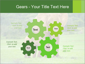 0000086724 PowerPoint Templates - Slide 47