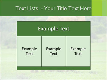 0000086724 PowerPoint Templates - Slide 59