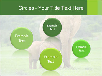 0000086724 PowerPoint Templates - Slide 77