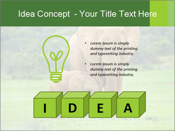 0000086724 PowerPoint Template - Slide 80