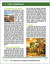 0000086724 Word Template - Page 3