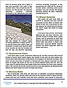 0000086727 Word Templates - Page 4
