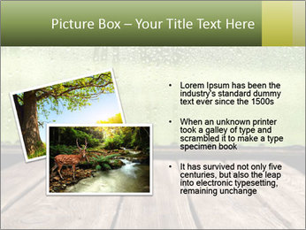 0000086738 PowerPoint Template - Slide 20