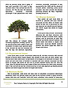 0000086738 Word Templates - Page 4