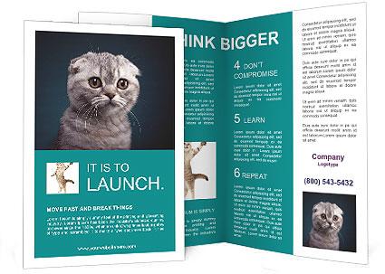 0000086748 Brochure Templates