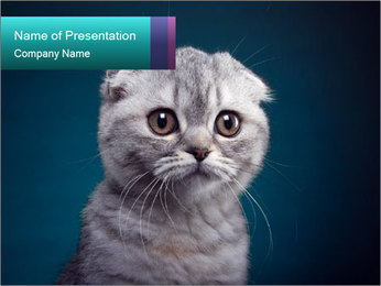 0000086748 PowerPoint Templates - Slide 1