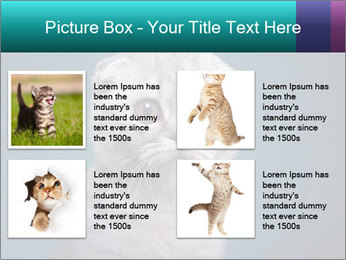 0000086748 PowerPoint Templates - Slide 14
