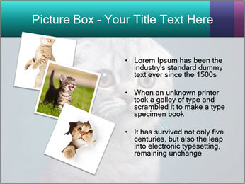 0000086748 PowerPoint Templates - Slide 17