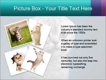 0000086748 PowerPoint Templates - Slide 23