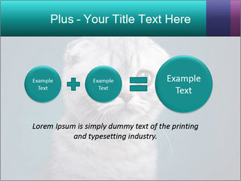 0000086748 PowerPoint Templates - Slide 75