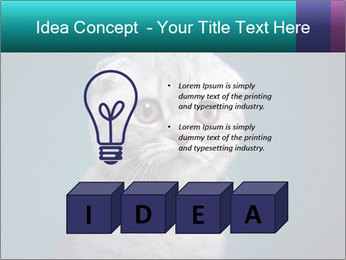 0000086748 PowerPoint Templates - Slide 80