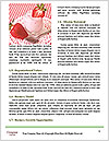 0000086756 Word Template - Page 4