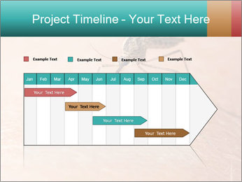 0000086761 PowerPoint Template - Slide 25