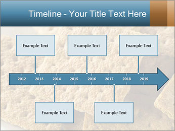 0000086771 PowerPoint Templates - Slide 28
