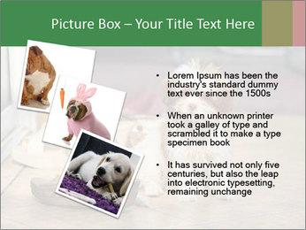 0000086775 PowerPoint Templates - Slide 17