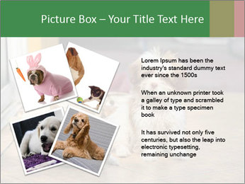 0000086775 PowerPoint Template - Slide 23