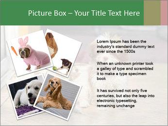 0000086775 PowerPoint Templates - Slide 23