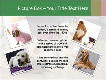 0000086775 PowerPoint Templates - Slide 24