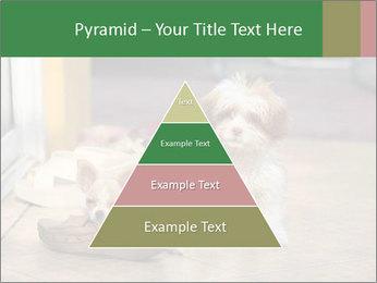 0000086775 PowerPoint Templates - Slide 30