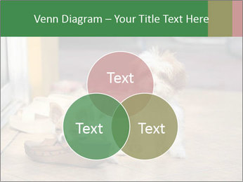 0000086775 PowerPoint Template - Slide 33