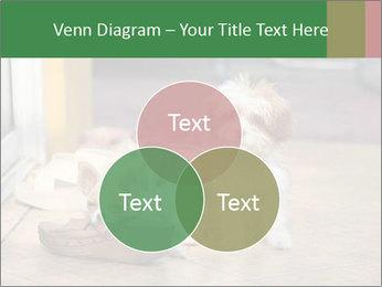0000086775 PowerPoint Templates - Slide 33