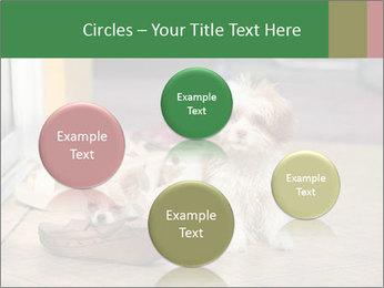 0000086775 PowerPoint Templates - Slide 77