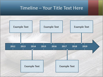 0000086788 PowerPoint Templates - Slide 28